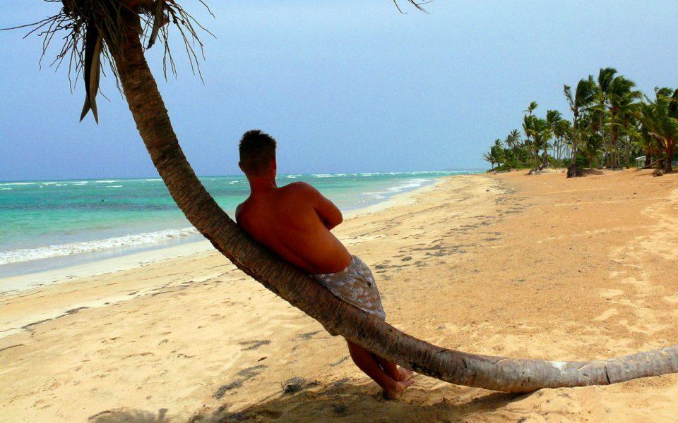 Peaceful Under Palm Tree