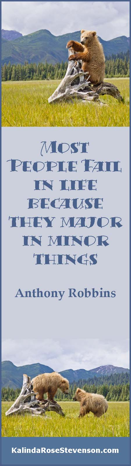 Anthony Robbins Major in Minors