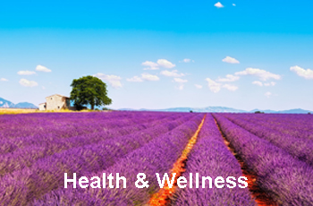 Health & Wellness-Wellness