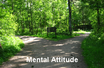Mental Attitude 2 Paths